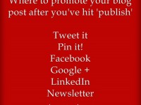Q & A: Ways to promote your blog post after you've hit 'publish'