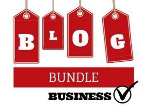 blog bundle business