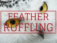 Ruffling Feathers