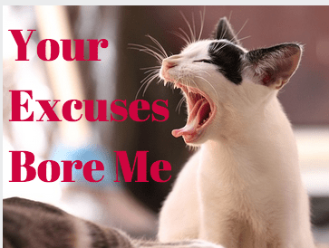 Get over yourself! Your excuses suck.